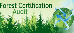 forest-cert-audit