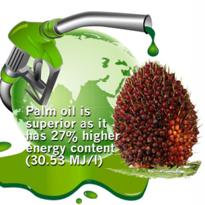 Palm oil biofuel