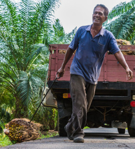 small-farmers-palm-oil