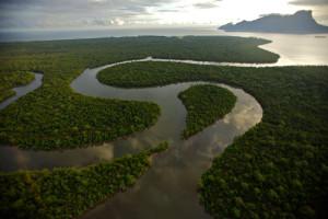 rajang-delta