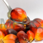 Perils of Spreading False Claims about Palm Oil
