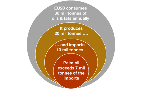 EU28-oils-and-fats-consumption