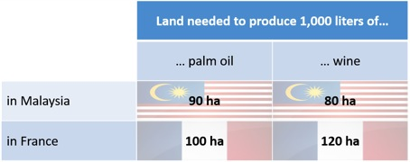 theory-comparative-palmoil