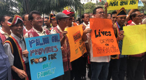 EU-smallholders-palm-oil-ban
