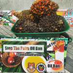 The Proposed EU Ban On Palm Oil As Biofuels, And One Stringent Certification : Protectionism or Fulfilling UN Sustainable Development Goals (SDG)