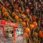 """Intellectually Lazy"" Boycotts, Such as Iceland Supermarket, Harm the Cause of Global Sustainability"